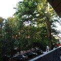 Вид с балкона № 215